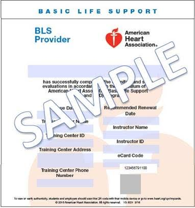e-card course completion certification from aha - the cpr hero ...